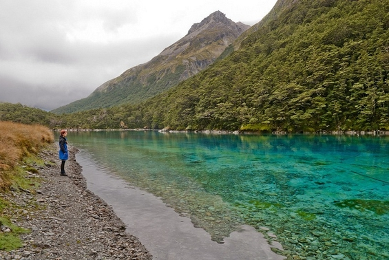Blue Lake - New Zealand - The Clearest Lake In The World