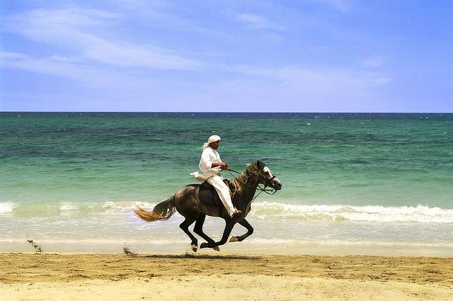 Djerba Island Tunisia