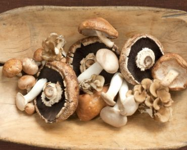 Mushrooms - Home Remedy for Cancer and Tumors